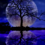Full Moon in Aries Oct 15/16, 2016
